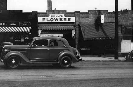 Atlantic & Pacific Tea Co., Spanner Flowers, and Hoffman's on Coventry