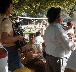 Musicians perform at Croatian picnic