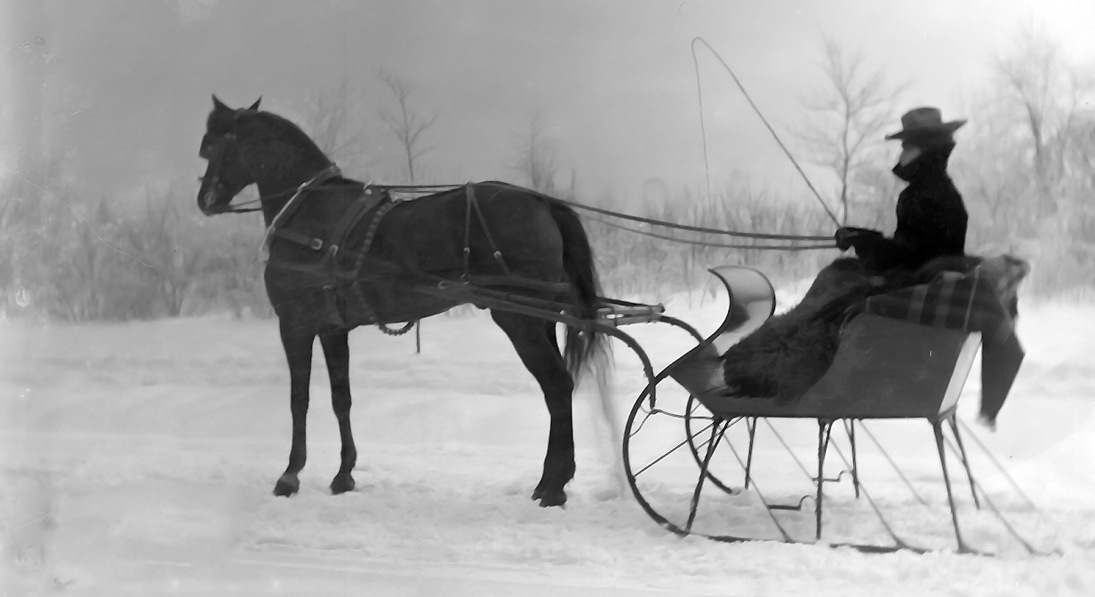 Unidentified individual sitting in a horse-drawn sleigh